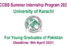 ICCBS Summer Internship
