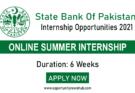 SBP Virtual Summer Internship