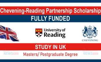 Chevening Partnership Scholarship